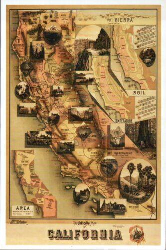 State of California Panoramic San Francisco Los Angeles etc Modern Map Postcard