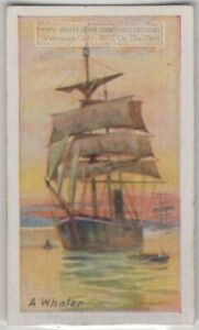 Whaler-Whale-Hunting-Sailing-Ship-85-Y-O-Trade-Ad-Card