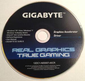 Real Graphics True Gaming скачать драйвер - фото 4