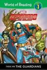 Guardians of the Galaxy: These Are the Guardians by Clarissa Wong, Ron And Marcelo Pinto Lim (Hardback, 2015)