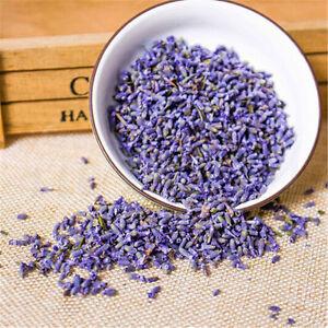 10~100g Lavender Tea Dried Flowers Premium Scented Tea Organic ...