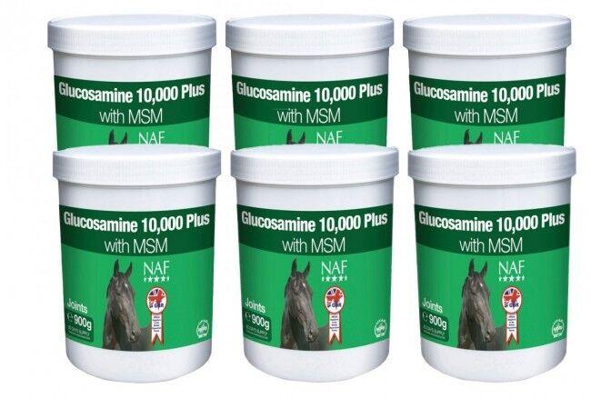 6  Cubos de Equino Glucosamina 10,000 Plus Msm (900gm) - Naf  venta