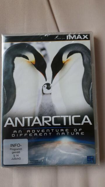 DVD Antarctica - An Adventure of a Different Nature