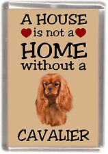 "Cavalier King Charles Spaniel Fridge Magnet ""A HOUSE IS NOT A HOME"" -3 Starprint"