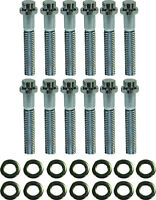 Small Block Ford Chrome 12 Point Intake Manifold Bolt Kit 265 289 302 351w V8