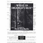 What is Dramaturgy? by Peter Lang AG (Paperback, 2004)