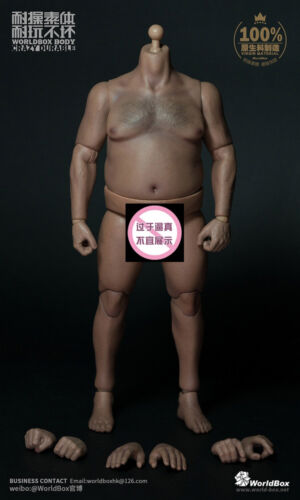 "Worldbox AT018 1//6 Scale Plump Body Durable For 12/""  Male Figure Doll Model"