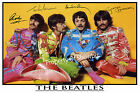 THE BEATLES - LARGE AUTOGRAPH PHOTO - ABSOLUTELY STUNNING