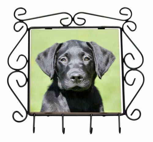 Black Labrador Puppy Wrought Iron Key Holder Hooks Christmas Gift AD-L2KH