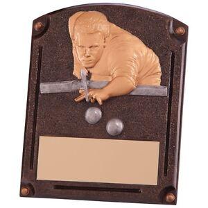 200mm-Billiards-Snooker-Trophy-RRP-7-99-inc-free-postage-engraving