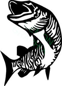 Catfish Noodler vinyl decal//sticker fish fishing boat river lake 5x5 #2
