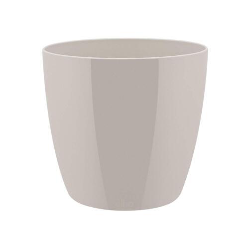 "Flower Pot Plants Herb Garden/""Brussels Diamond/"" Round for Table Floor Windowsill"