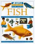 Fish by Mark Evans (1993, Hardcover)
