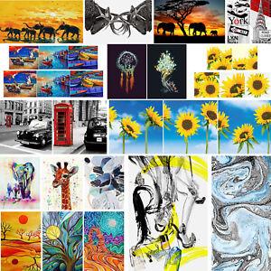 Frameless-Abstract-Modern-Oil-Painting-Art-Canvas-Print-Animal-Scenery-Art-Decor