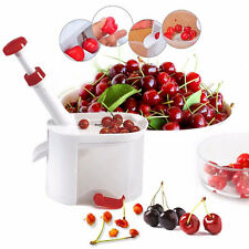 Cherry Olive Pits Pitter Stone Seed Remover Machine Corer Container Kitchen Tool