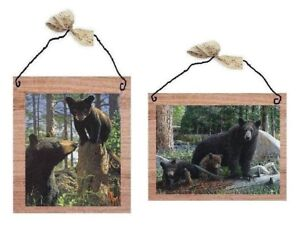 Wildlife-Pictures-Bears-Cubs-Black-Bear-Nature-Wall-Hangings-Plaques