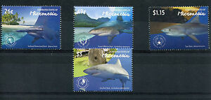 Micronesia 2015 MNH Sharks 4v Set Marine Hammerhead Whitetip Tiger Reef Shark