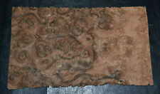 Walnut Burl Raw Wood Veneer Sheets 5 X 9 Inches 142nd Thick 7805 16