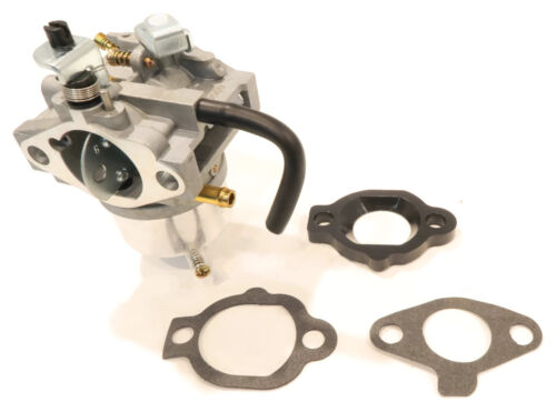 Briggs /& Stratton 492256 with Gasket Assembly Carburetor for Snapper Murray