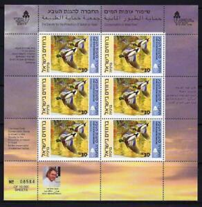 ISRAEL-BIRDS-DUCKS-IN-HOLYLAND-MALLARD-6-STAMP-SHEET-II-MNH-OG
