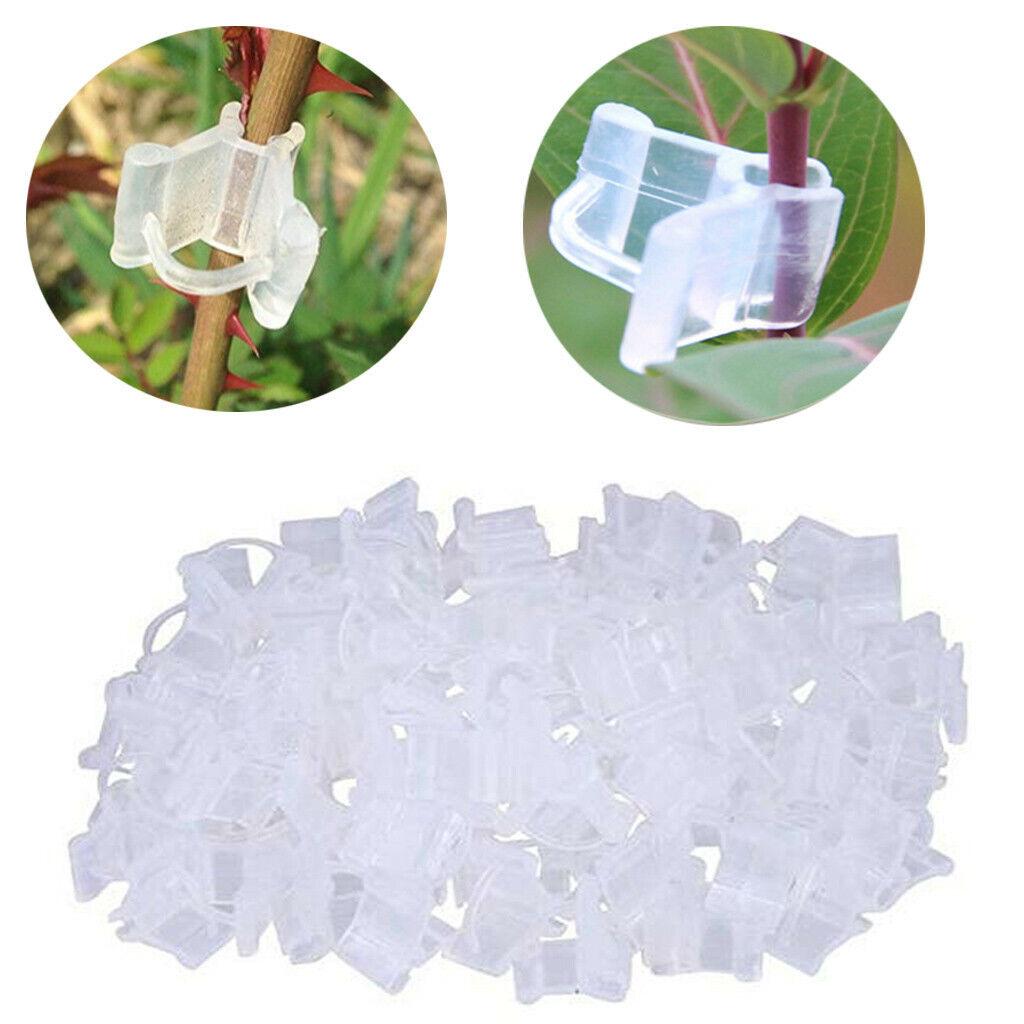 20pcs Plastic Transparent Mini Grafting Clips Plants Seeding Grafting Clip