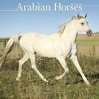 Arabian Horses Calendar 2017 by Avonside Publishing Ltd.