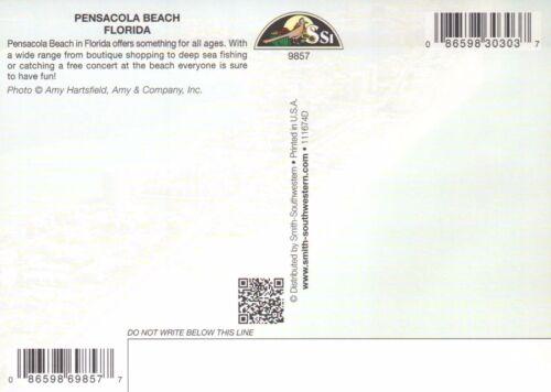 Beach Hotels Ocean Bridge FL Postcard Aerial View of Pensacola Beach Florida