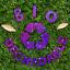 Hemway-Eco-Friendly-Craft-Glitter-Biodegradable-1-40-034-100g thumbnail 231