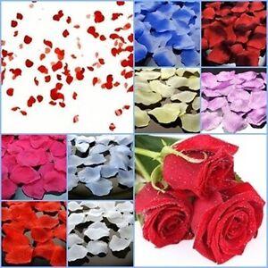 100 Künstliche Rosenblätter Rosenblüten magenta Streublumen Streudeko Hochzeit