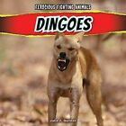 Dingoes by Julia J Quinlan (Hardback, 2013)