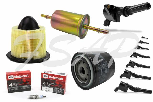 Tune Up Kit 2001 Ford F150 V8 5.4L High Performance Ignition Coil DG508 Spark Plug SP479