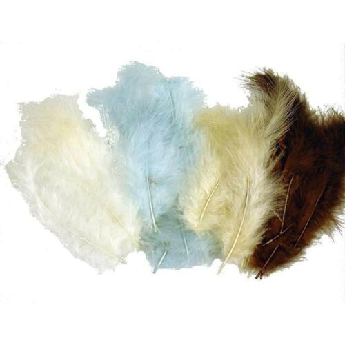 Feathers Natural Coloured 50 per bag