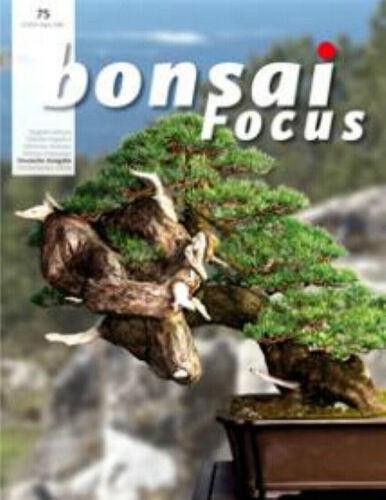 Das europ BONSAI Focus #75 SEP//OKT 2015 BONSAI Magazin