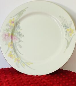 Jamestown china jam2 dinner plates Set of 2 10 Inch EUC 🥰