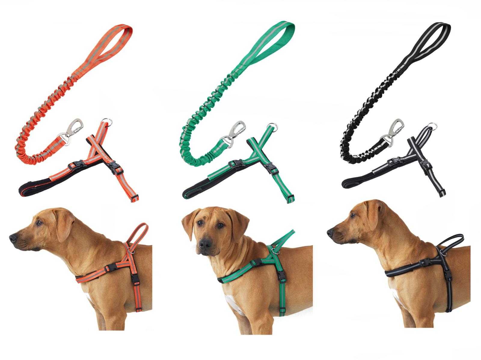Anti-Shock Elastic Leash & Comfort Reflective Harness for Medium & Large Dogs