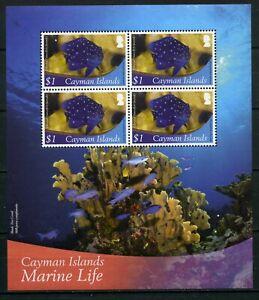 2012 Cayman Islands, marine fauna, fish, s/sheet, Mi Bl. 54, MNH