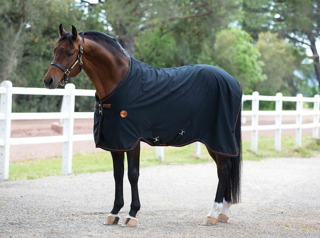 Rambo  Ionic Horse Pony Cob Breathable Comfortable Equestrian Tech Stable Sheet  factory outlet online discount sale