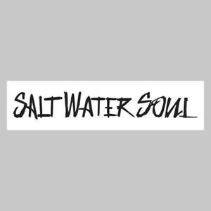 """SALTWATER SOUL Decal 8/"""" x 2/"""" Pink Letter Sticker"""