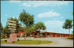 MARTINSBURG WV Pikeside Motel Route 11 Vtg Roadside View Postcard Old West VA