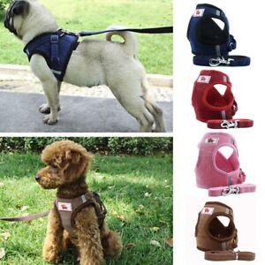 Reglable-Harnais-plomb-Collier-Laisse-ceinture-corde-Laisse-pour-animal-de-compagnie-chien-chat