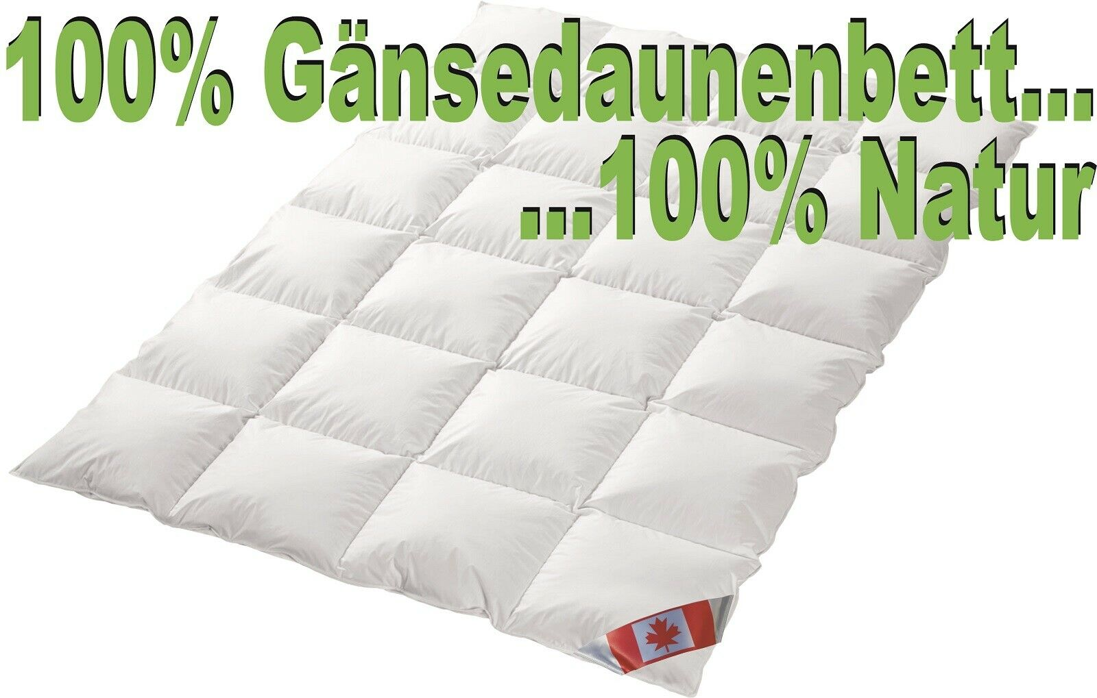 Polaris Premium Ganzjahresdecke 100% Natur Gänsedaune Pol 3 135x200 Neu