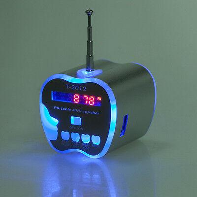 Mini USB Portable FM Radio Speaker MP3 Player Music Disk SD TF Card PC New