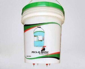 One Peckomatic (Peckomatick) Poultry Drinker