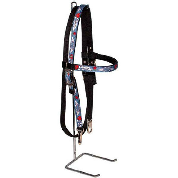 Best Horse Ever Fashion Headstall & Reins