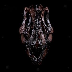 1//12 Scale Dinosaur Skull Tyrannosaurus Skeleton Mpdel Drawing Prop Black