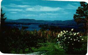 Vintage Postcard - The Village Of Blue Mountain Lake New York NY #3802