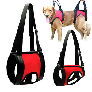 s l300 full body front rear dog lift support harness injury back hip assist