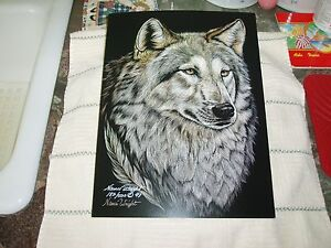 Two Wolf Native American Northwest Wild Animal Wall Decor Art Print Poster 22x28