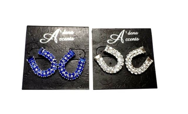 Indianapolis Colts Crystal Rhinestone Horseshoe Earrings - Indy Luck Lucky