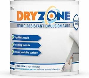 Dryzone Anti Mould Paint 1L Brilliant White - Mould ...